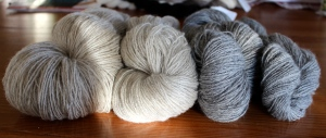 Kainuu Grey. 2- and 3-ply, light and dark grey