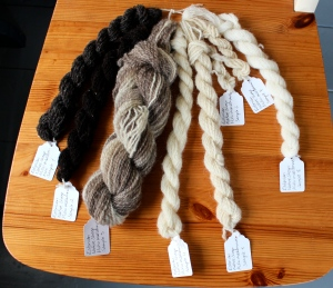 Estonian Native Sheep. Samples 1-8