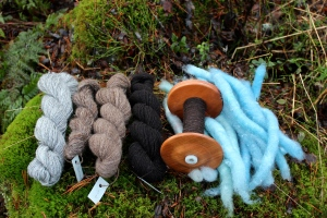 Kainuu Grey, Värmland, Finn, Finull, Finn on the bobbin and as rolags